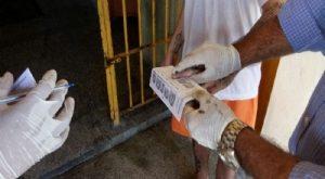 Oitenta presos usavam nomes falsos