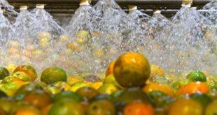 Exportações sergipanas aumentaram 29,9%, em agosto
