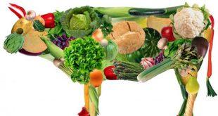 O veganismo e os negócios: mercado está de olho no nicho dos nichos