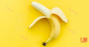 Reaproveitamento integral dos alimentos