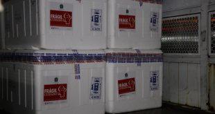 As doses da vacina Coronavac começarão a ser distribuídas amanhã em Sergipe